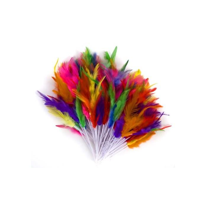 Plumas varios colores Pascua
