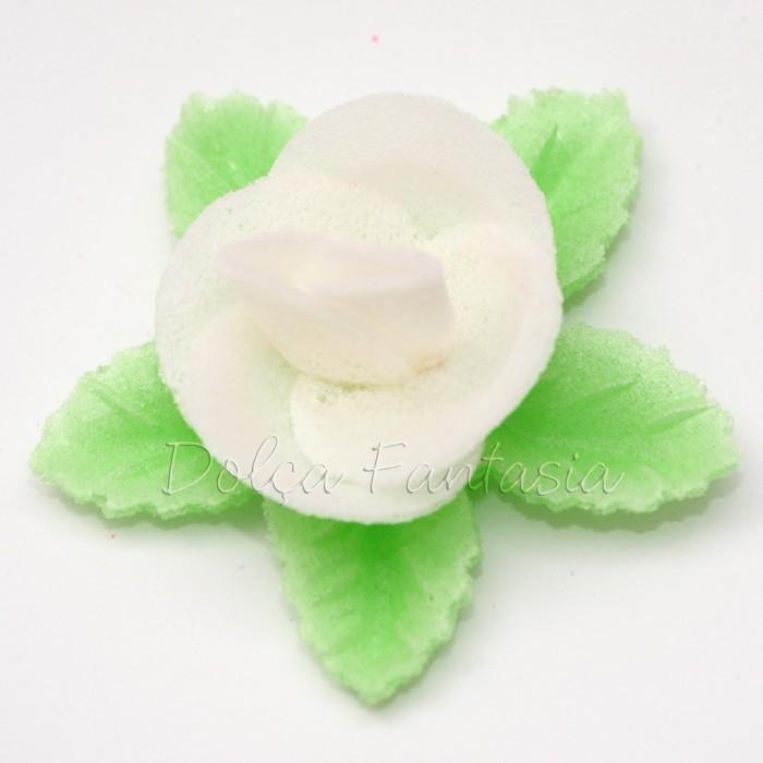 Set de 3 Rosas de oblea color blanco