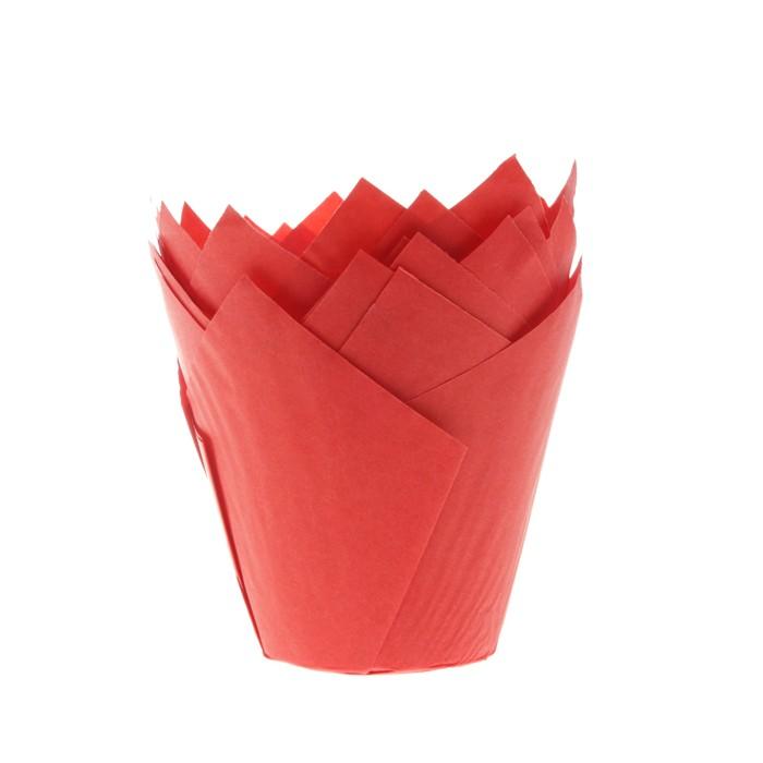 Tulipa roja 36 unidades